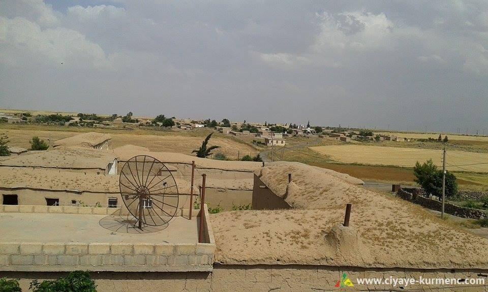 17Arab-Shah-qamshilo