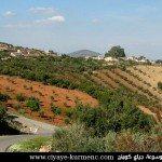 قرية حجيكلي  | Gundê Ĥecîka