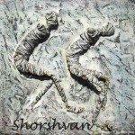 شورشفان ابراهيم Shorshvan Ibrahim 154